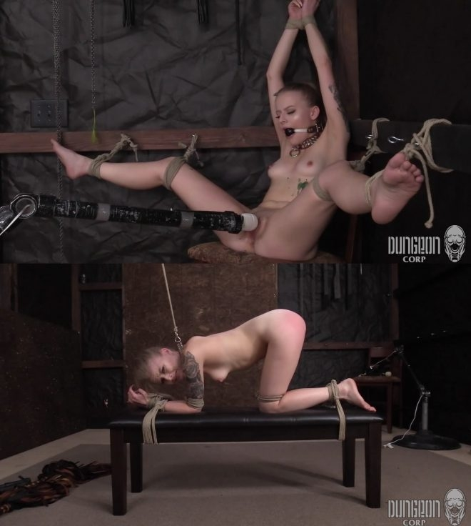 SocietySM, DungeonCorp Bondage and Submission, Adults Only XXX : Paris Endures (2019/FullHD/1.67 GB)