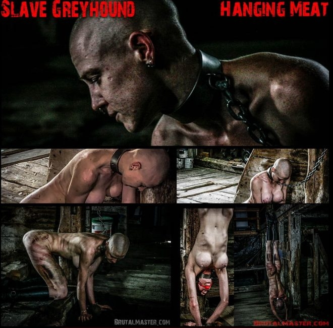 Brutal Master Hanging Meat: Slave Greyhound (2019/FullHD/2.28 GB)