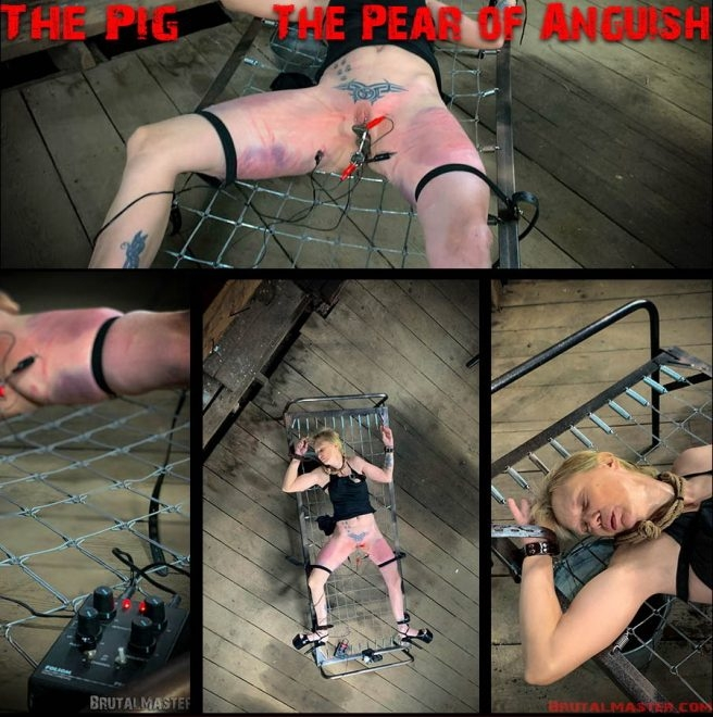 Brutal Master - The Pig – The Pear Of Anguish (2019/FullHD/1.83 GB)