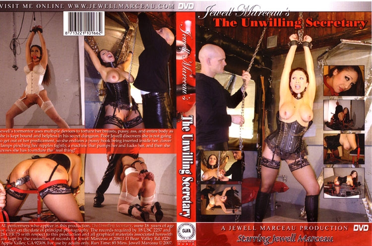 The Unwilling Secretary (2020/SD/832 MB)