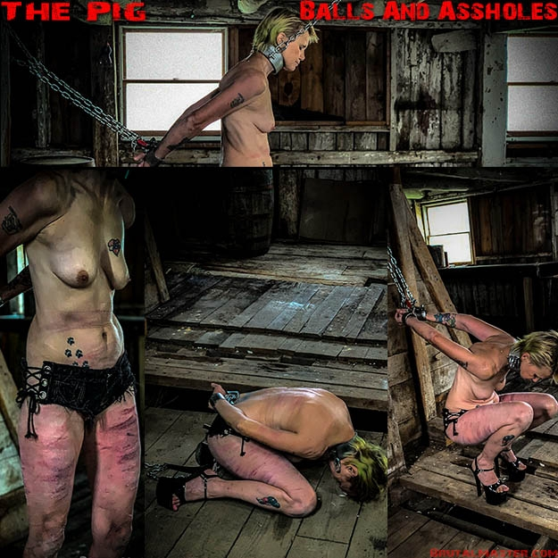 BrutalMaster - The Pig – Balls And Assholes (2020/FullHD/1.30 GB)