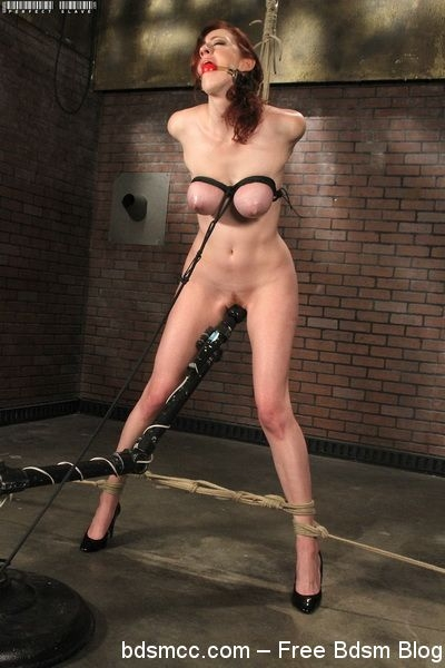 Perfect Slave - Holly Wood - Hooray For Holly Wood! (2020/HD/149 MB)