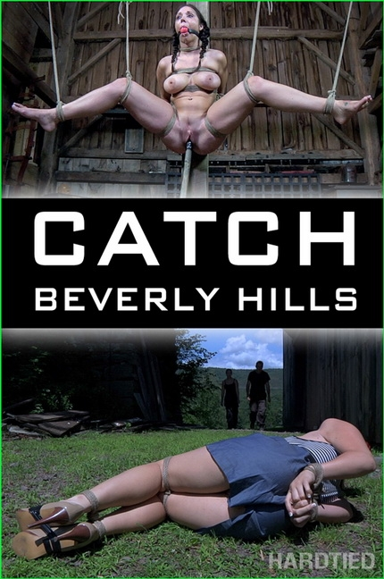 Hardtied - Beverly Hills - Catch (2020/HD/2.31 GB)