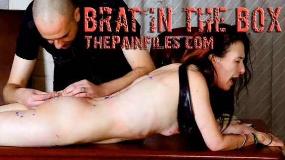 The Pain Files – Brat In The Box (2020/FullHD/619 MB)